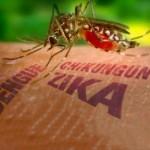 "Level Of Alarm: Zika Virus Spreading Rapidly Around The World Has ""Explosive Pandemic Potential"""
